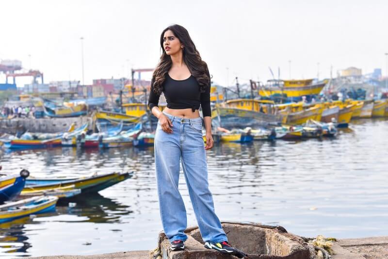 Nabha Natesh Navel Stills