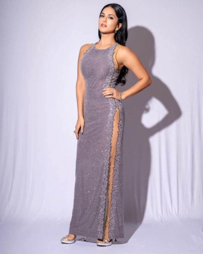 Sunny Leone Pictures In Sizzling Silver Dress
