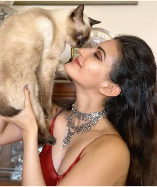 Spicy Actress Amyra Dastur