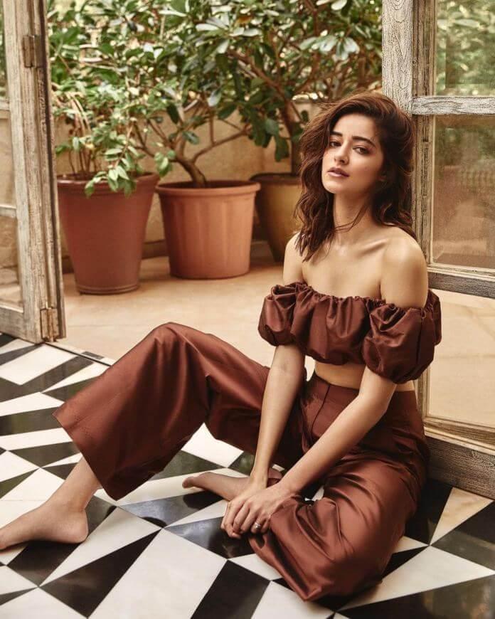 Hot Pics Of Ananya Pandey In Brown Dress