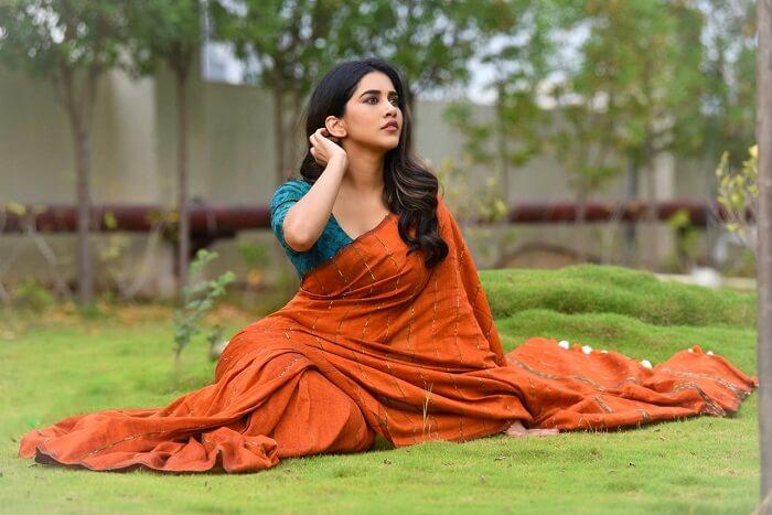 Nabha Natesh Photoshoot Pics In Saree