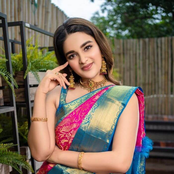 Nidhhi Agerwal Photos Collection In Saree