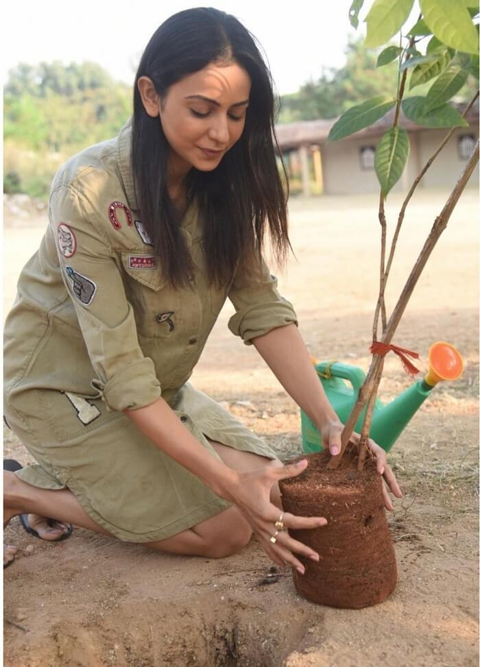 Heroine Rakul Preet Accepts The Green India Challenge
