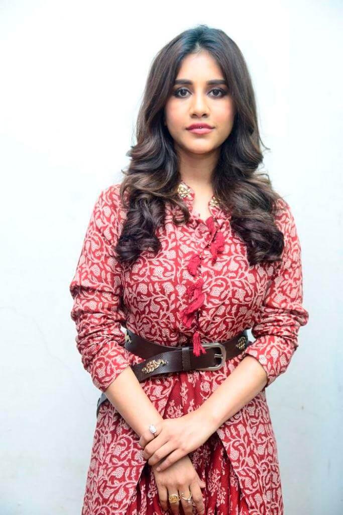 Ismart Shankar Movie Actress
