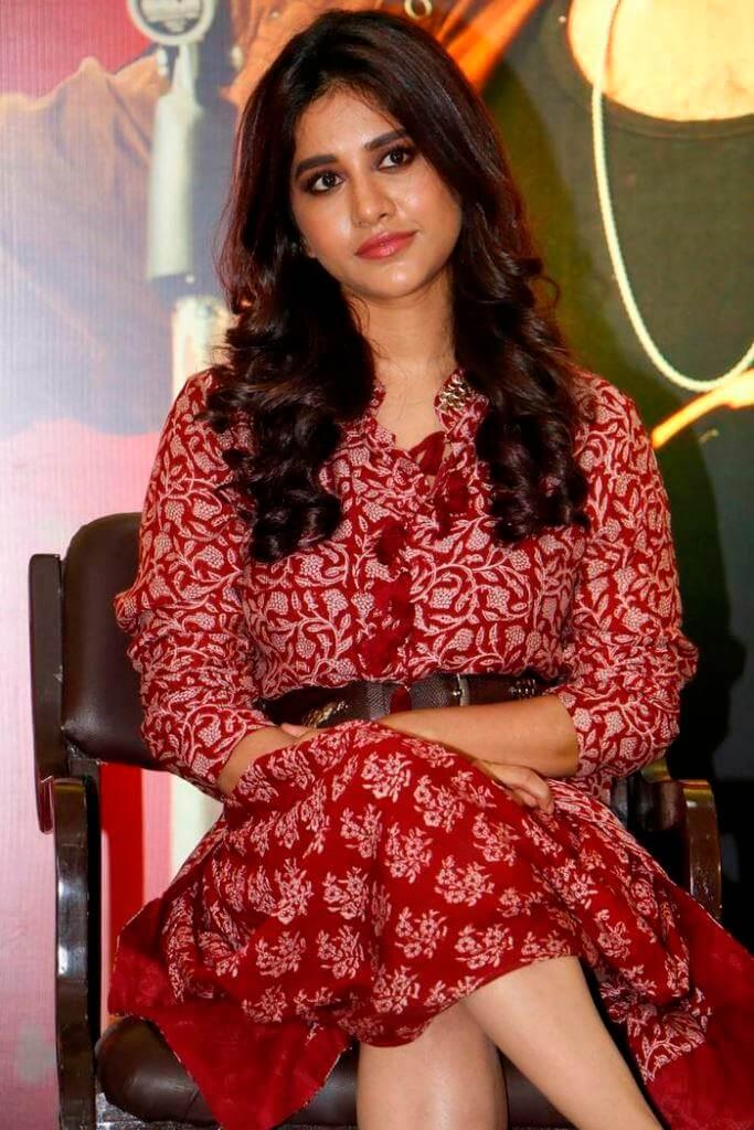 Nabha Natesh At Movie Thanks Meet