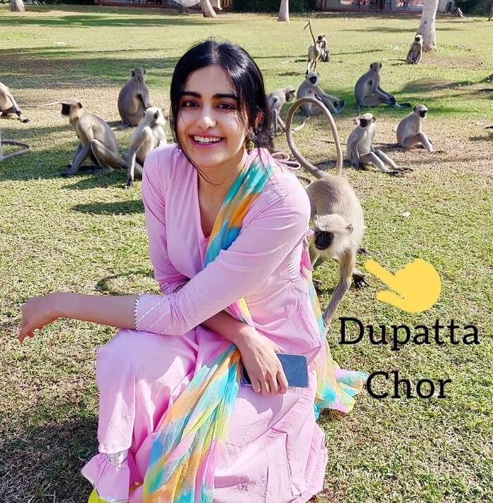 Adah Sharma New Pictures