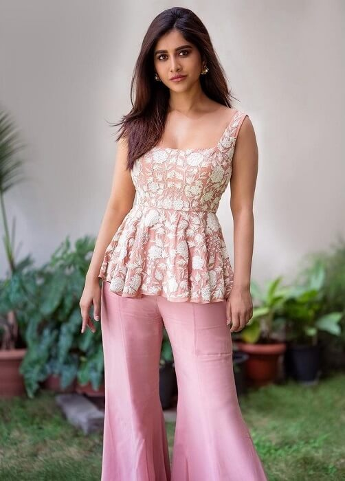 Nabha Natesh At Movie Interview
